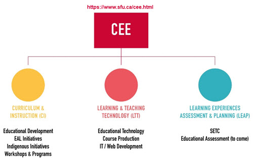 a simple chart showing the intended organization of Centre for Educational Excellence